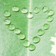 Close-up heart from water drops on leaf — Stock Photo