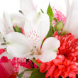 Close-up wedding bouquet isolated — Stock Photo #1800465