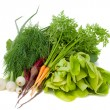 Heap of new vegetables — Stock Photo