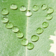 Heart from water drops on leaf — Stock Photo