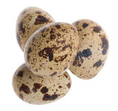 Four quail eggs in pyramid — Stock Photo