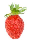 Single strawberry — Stock Photo