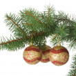 Three christmas balls in a fir branch — Stockfoto