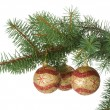 Three christmas balls in a fir branch — Stok fotoğraf