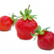 Three strawberries - Stock Photo