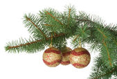 Three christmas balls in a fir branch — Stock Photo