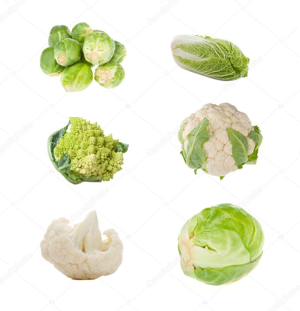 Les différentes variétés de choux