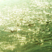 Beautiful water ripples background — Stock Photo