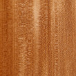 wood texture — Stock Photo #1662072