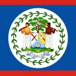 Flag Of Belize — Stock Photo #1918757