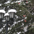 Stock Photo: Lamp, snow, trees
