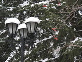 Lamp, snow, trees — Stock Photo