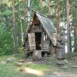 Wood house of old witch — Foto Stock