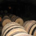 Wine tuns — Stock Photo