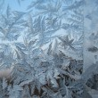 Snow pattern on winter window — Stock Photo #2525369