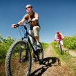 Relax biking - Stock Photo