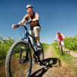 Royalty-Free Stock Photo: Relax biking