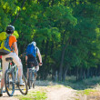 Cyclists relax biking outdoors — Stock Photo #1829422