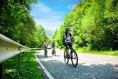 Três motociclistas na estrada da floresta — Fotografia Stock