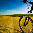 Royalty-Free Stock Photo: Bicycle
