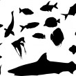 Different fish silhouettes - Stockvectorbeeld