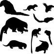 Small animal silhouettes collection — Stock Vector #1739680