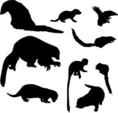 Small animal silhouettes collection — Stock Vector