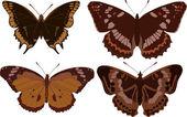 Cuatro mariposas oscuras — Vector de stock