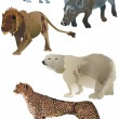 Royalty-Free Stock Vector Image: Wildlife animals