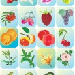 Royalty-Free Stock Vector Image: Flowers and fruits icons