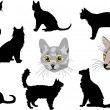 Royalty-Free Stock Imagen vectorial: Cat portraits and silhouettes collection