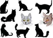 Cat portraits and silhouettes collection — Stock Vector