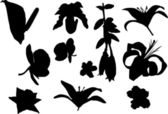 Eleven flower silhouettes — Stock Vector