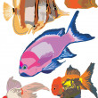 Stock Vector: Fish collection