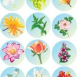 Flowers icons — Stock Vector