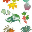 Foliage collection — Stock Vector