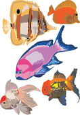 Fish collection — Stock Vector
