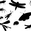 Bugs and other insect silhouettes — Stock Vector