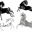 Black and white horse collection — Stock Vector