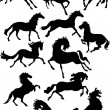 Twelve horse silhouettes - Stock Vector