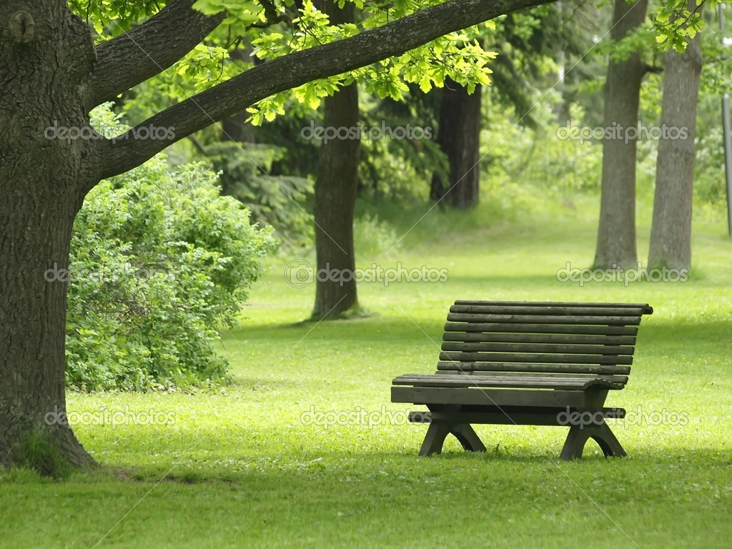 Free Park Bench Plans Wooden Bench Plans | AndyBrauer.com