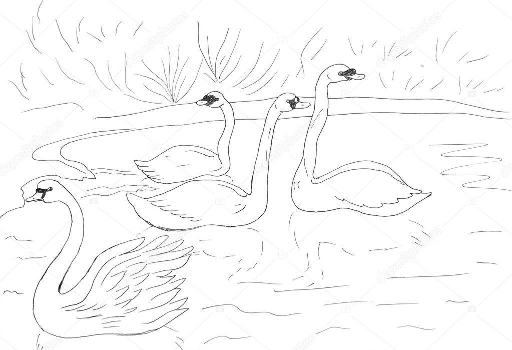 рисунки озера карандашом: