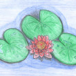 Lotus flower drawing — Stock Photo