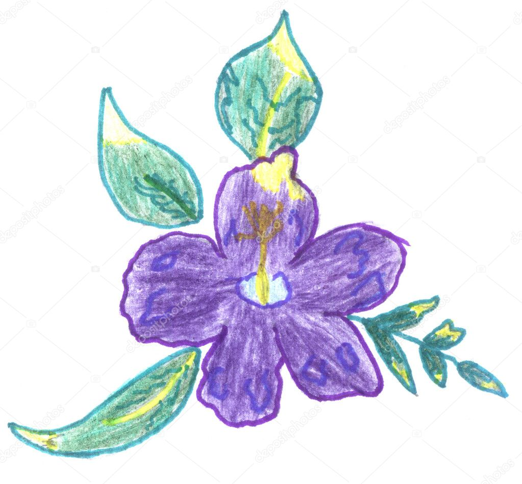 Violet flower sketch — Stock Photo © nadyaus #2126283