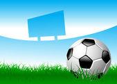Balón de fútbol en campo de hierba — Vector de stock