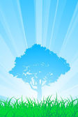 Summer tree — Stock Vector