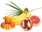 Ropical fruits — Stock Photo