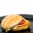Chicken burger - Stock Photo