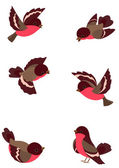 Set funny birds — Vector de stock