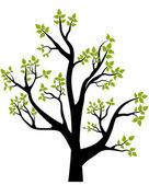 Wiosną drzewa — Wektor stockowy